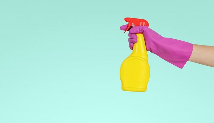 Reasons to Use Professional Cleaning Services for Your Home